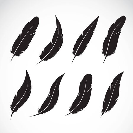 Vector group of black feather on white 向量圖像