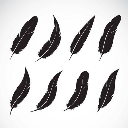 Vektorgruppe der schwarzen Feder auf Weiß Vektorgrafik