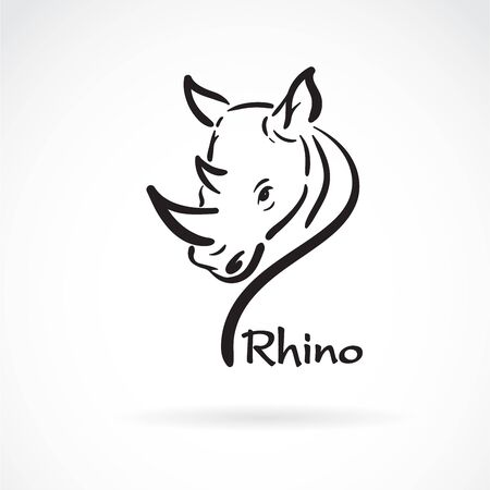 Vector of freehand rhino head painting on white