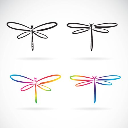 Vector of hand drawn doodle style dragonfly isolated on white