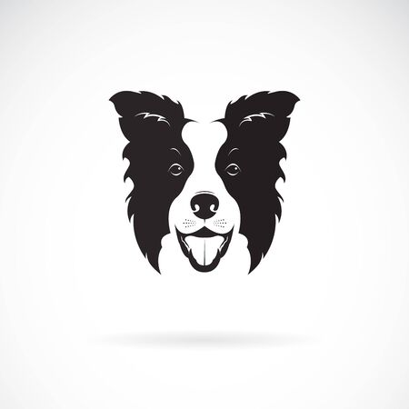 A border collie dog on white Stock Vector - 130206056