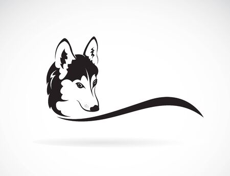 Vector of siberian husky dog head design on white Illustration
