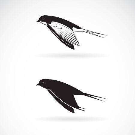 Vector of barn swallow flying design on white