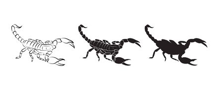 Vector of scorpions isolated on white Vector Illustration
