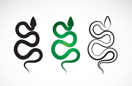 Vector of snake design on white background. Animals. Reptile. Snakes logo or icon. Easy editable layered vector illustration. 向量圖像