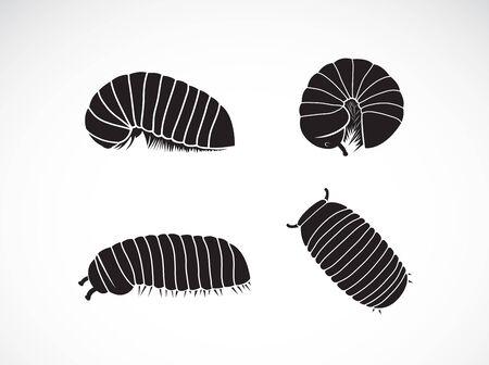 Vector del grupo del gusano milpiés de la píldora (Oniscomorpha) aislado en un fondo blanco. Icono o logotipo de gusano., Glomerida. Insecto. Animal.