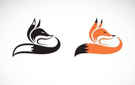 Vector of fox design on white background. Wild Animals. Easy editable layered vector illustration. Çizim