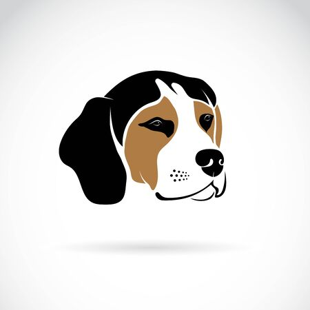 Vector of beagle dog head on white background, Pet. Animals. Easy editable layered vector illustration.