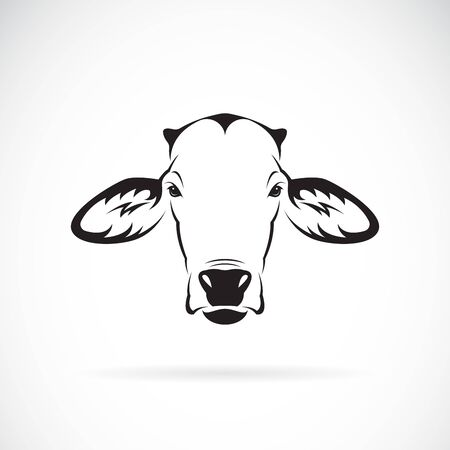 Vector of a cow head design on white background. Farm Animal. Cows logos or icons. Easy editable layered vector illustration. 写真素材 - 143374517