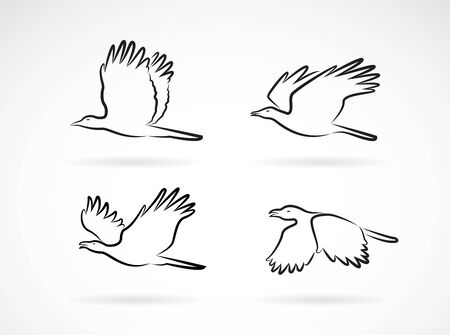 Vector group of crow flying on white background. Birds. Animals. Easy editable layered vectors illustration. Vettoriali