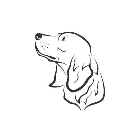 Vector of a dog head design(Golden Retriever) on white background. Pets. Easy editable layered vector illustration. Animals.