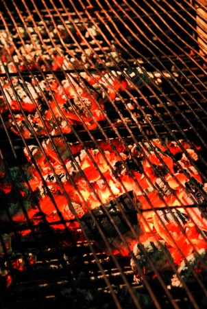 Barbecue charcoal stove photo