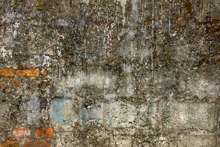 old dirty concrete wall with protruding red bricks. uneven rough surface. stains of cement and paint