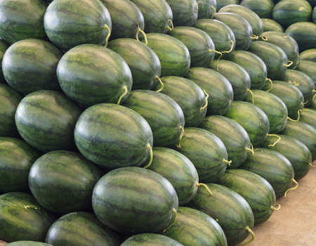 stackable: stackable watermelon in the market