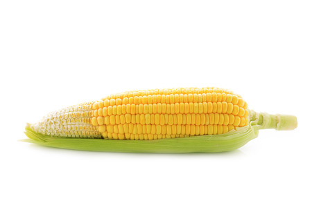 yellow corn with leal on white background