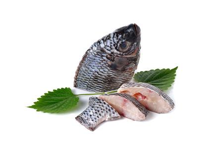 nilotica: portion of fresh Tilapia fish on white background