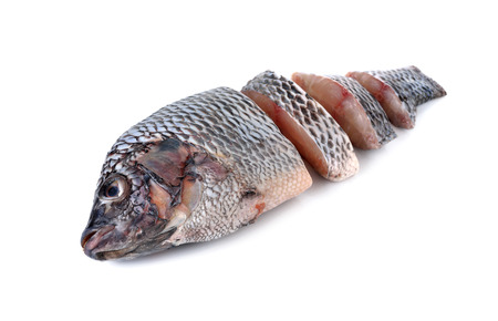 oreochromis: portion of fresh Tilapia fish on white background