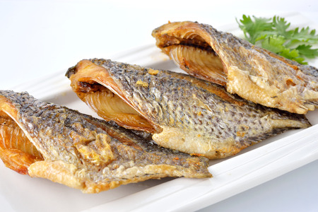 oreochromis: fried Tilapia fish on plate with white background