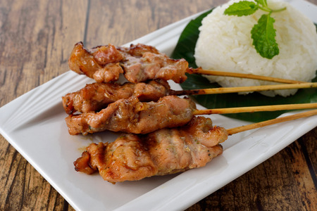 grilled spice pork skewer with sticky rice on plate photo
