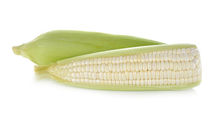 uncooked white corn with leaf on white background Imagens