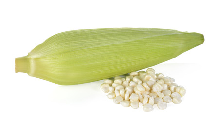 wil: uncooked white corn wil leaf on white background Stock Photo