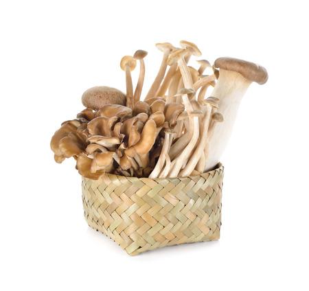 Eryngii, Hatake shimeji and Maitake mushroom in bamboo basket on white background