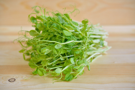 sprout: heap of snow pea sprouts or Toumyou sprouts on wooden table
