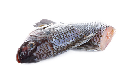 nile tilapia: Gutted and scaled Nile Tilapia fish on white background Stock Photo