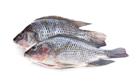 scaled: Gutted and scaled Nile Tilapia fish on white background Stock Photo