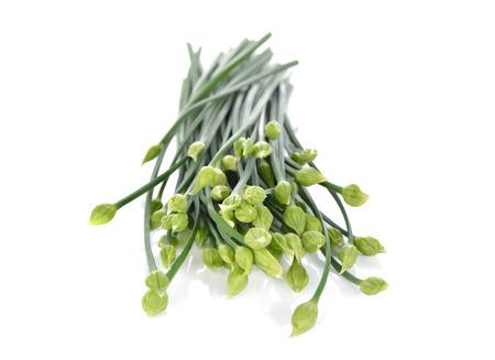 cebollin: Flor de las cebolletas sin cocer o cebolletas chinas sobre fondo blanco