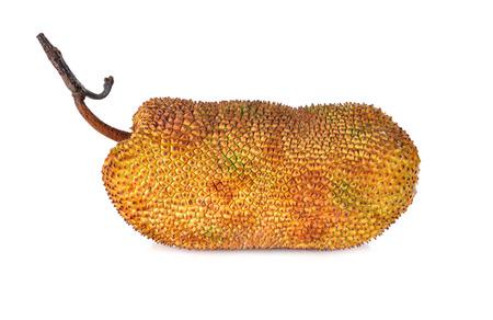 whole ripe cempedak with stem on white background Stock Photo