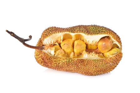 split ripe cempedak with stem on white background