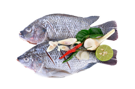 gutted: Gutted, scaled and sliced Nile Tilapia fish with herbs on white background