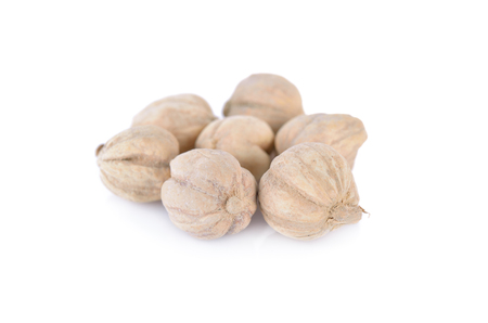 clustered: dried cardamom seed on white background