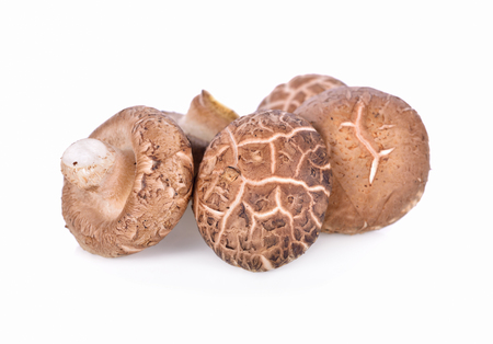 fresh Shiitake mushroom on white background Stock Photo