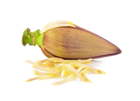 uncooked banana blossom on white background