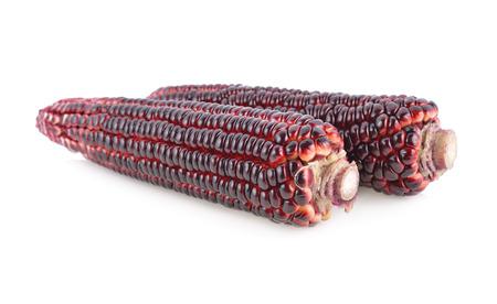 fresh purple corn on white background