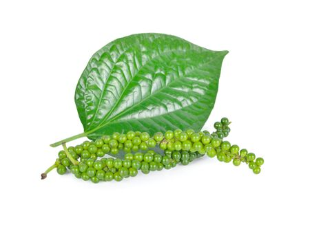 bunch of fresh green peppercorns with leaf on white background