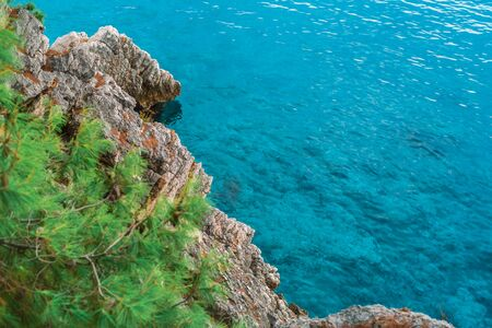 Beautiful rocky coast and azure Adriatic sea. Clear sea water, rocks and pines on the shore. Mediterranean landscape. Copyspace