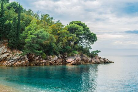 Rocky shore of a small Cape covered with pine forest and cypresses. Azure clear clear water of the Adriatic sea. Cloudy weather. 版權商用圖片