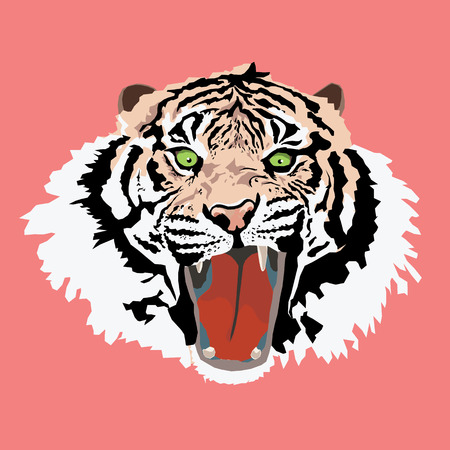 Tiger head on pink background Vector