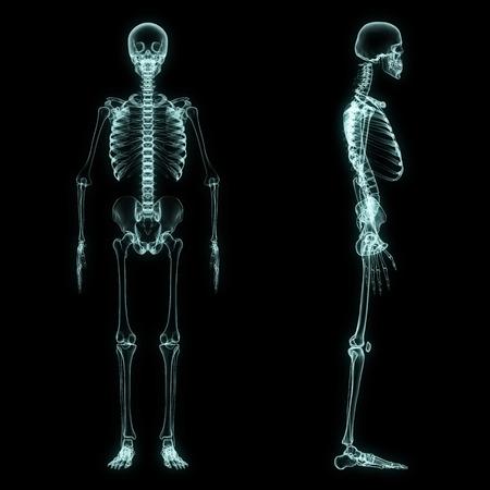 esqueleto humano: De rayos X de cuerpo completo del esqueleto en azul brillo con el fondo negro