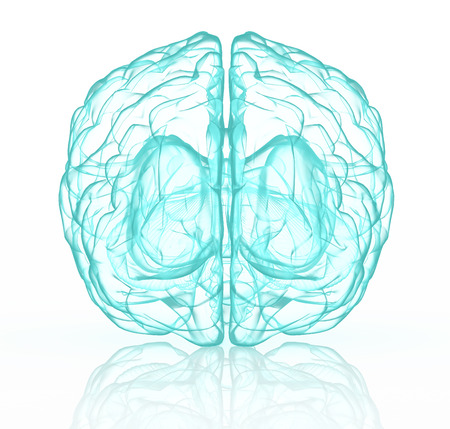 xray: X-ray human brain in blue with clipping path.