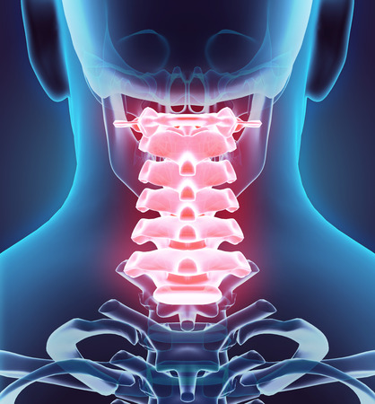 3D illustration of Cervical Spine - Part of Human Skeleton.