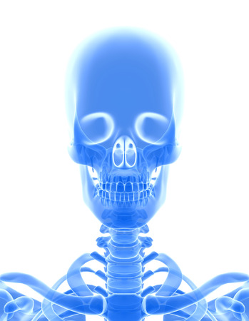 3D illustration of shiny blue skeleton system, medical concept. Stock Photo