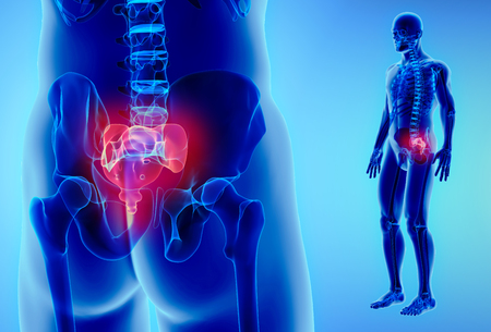 Ilustración 3D de la espina dorsal del sacro - Parte del esqueleto humano. Foto de archivo - 87170573