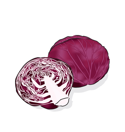 salads: A vegetable is often used raw for salads and coleslaw.