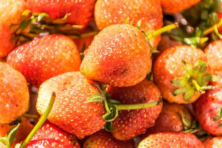 strawberry fresh fruit, Zoom macroshot, Strawberry background