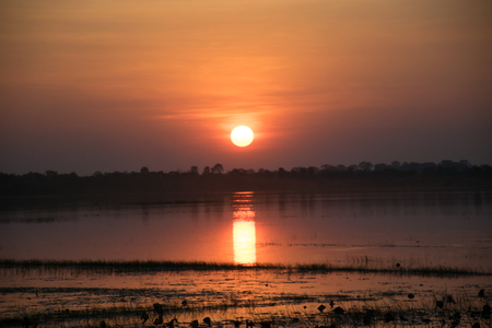avocation: sunshine sky in the evening,sunset background, in the river have lotus leaf