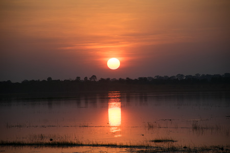 emanate: sunshine sky in the evening,sunset background, in the river have lotus leaf